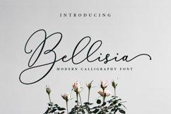 Bellisia Script Product Image 1