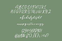 Sartadi - Beautiful script font Product Image 6