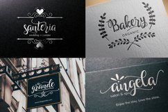 Hollyn Script with Ornaments Font Product Image 4