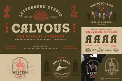 Organic Font Collection Product Image 2