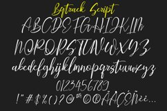 Bqtrack Calligraphy Script Font Product Image 3