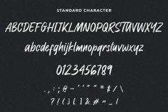 Raymond Signature Font Product Image 5