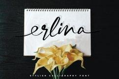 Erlina. Stylish Calligraphy Font Product Image 2