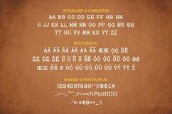 Web Font Vins Font Product Image 3