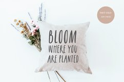 AIRY FRESH Distressed Farmhouse Font Product Image 2