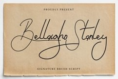 Bellaigho Stanley Product Image 1