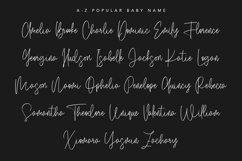 Salmander Bentols Script Signature Typeface Font Product Image 4