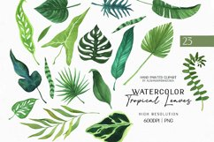 Watercolor Tropical Leaves Clipart, Palm Trees, Jungle Product Image 1