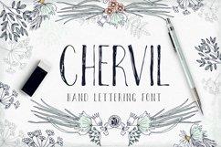 Chervil Product Image 1