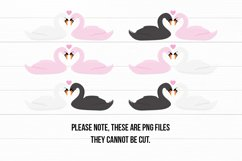 Cute Swans PNG Clipart Set - Swan Clipart Product Image 4