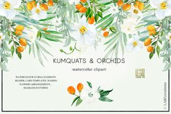 Kumquat & white orchids. Watercolors clipart collection. Product Image 2