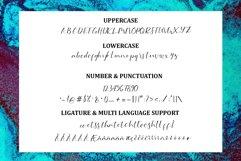 Serotonon Calligraphy Font Product Image 3