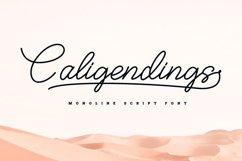 Caligendings - Monoline Script Fonts Product Image 1