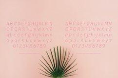Blushes — Light & Light Italic Product Image 4