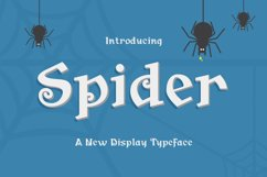 Spider Product Image 1