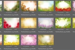 40 Painted Flowers Photo Overlays Product Image 5