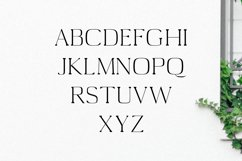 Medric Serif Font Family Product Image 4