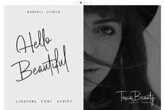 Tosca Beauty Handwritten Font Product Image 6