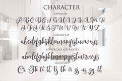Monttassic - Luxury Script Font Product Image 3