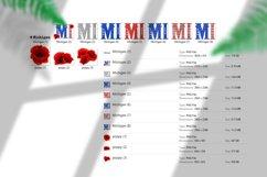 State abbreviation. USA sublimation. Michigan Product Image 5