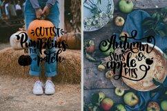 Thanksgiving bundle svg Gobble SVG Pumpkins svg Turkey Product Image 3