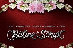 Baline Script Product Image 1