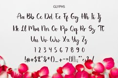 Roller Blow Brush Font Product Image 2