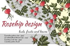 Design with buds, leaves and fruits of rose hip. Product Image 1
