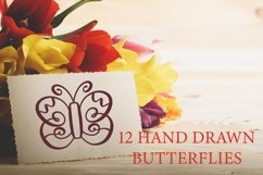 Hand Drawn Flourishes Product Image 4