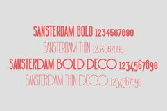 Sansterdam Bold and Thin Product Image 2