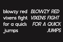 Bechtlers Sans Serif Product Image 2