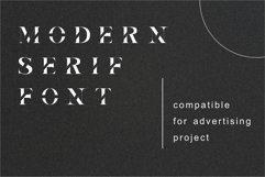 Elva | Modern Serif Product Image 3