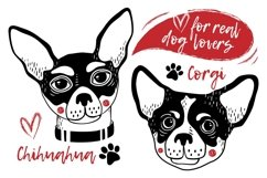 Cute Dogs Graphic Pack Product Image 5