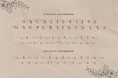 Anguela Script Handwriting Product Image 6