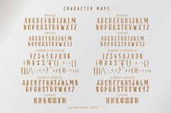 Hello Spring | Fancy Serif Duo Font Product Image 3
