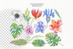 Watercolor Tropics Clipart Product Image 4