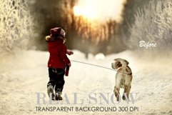 Snow overlay, snow overlay for photoshop Product Image 2
