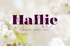 Hallie - Bold Classic Font Product Image 1