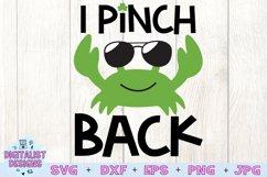 I Pinch Back SVG, St Patrick's Day SVG, Crab SVG Product Image 3