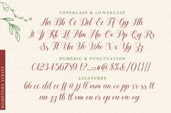 Hometona Script Product Image 5