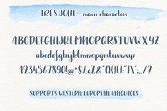 Trés Jolie - Serif Font with Doodles Product Image 2