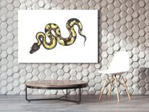 Watercolor Clipart. Snake Clipart. Snake and lizard Product Image 2