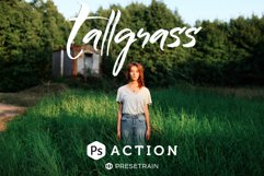 Tallgrass Photoshop Action Product Image 1