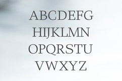Haddie Modern Serif Font Family Product Image 2