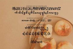 Web Font Ratuiga - A Beauty Script Font Product Image 6