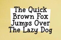 Web Font Haptics - Soft Serif Font Product Image 4