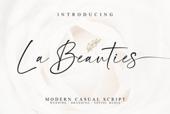 La Beauties-Casual Handwritten Font Product Image 1