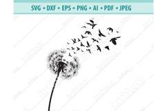 Dandelion with Birds SVG, Dandelion Flower Dxf, Png, Eps Product Image 1