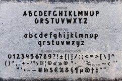 Grunge Latin and Cyrillic Brush Script Font Product Image 2