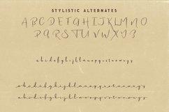 Bettina Script Font Product Image 6